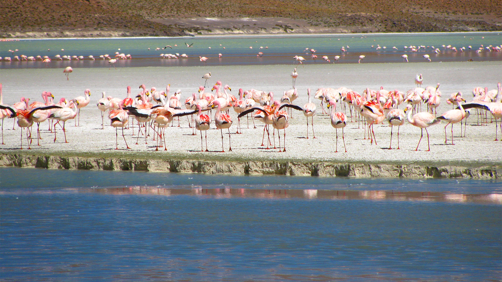 National Park Eduardo Avaroa